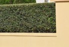 Airly Decorative fencing 30