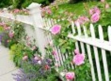 Kwikfynd Garden fencing airly